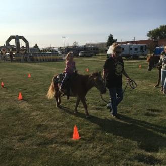 ellie horse